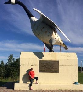Canada Goose Wawa
