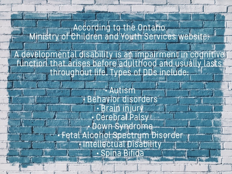 More Than One Developmental Disability
